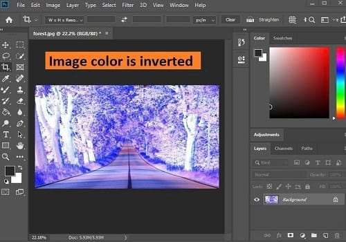 how-to-invert-colors-in-photoshop-3